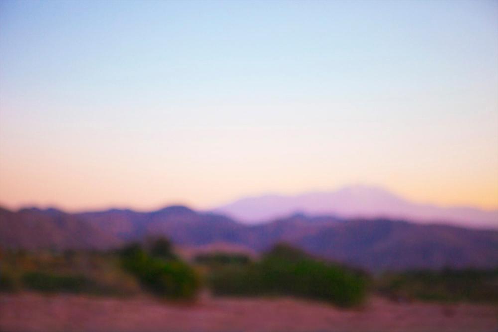 Desert Purple Haze