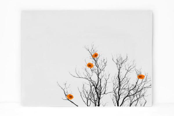 Orange Platter