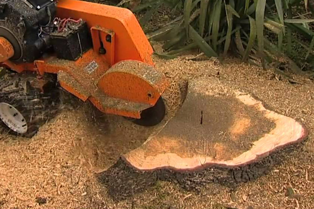 Stump Removal - Need to get rid of that unsightly stump?