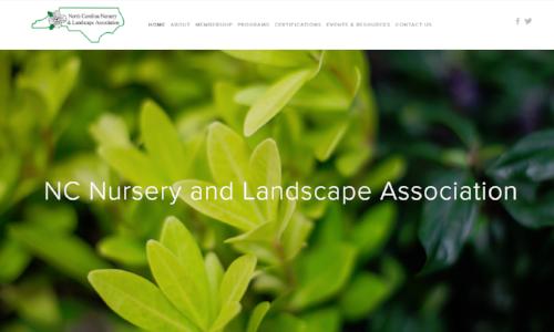 Website Snapshot.PNG