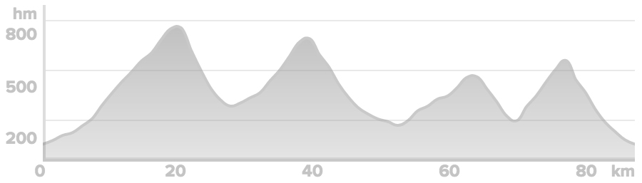 Elevation-Sumene.jpg
