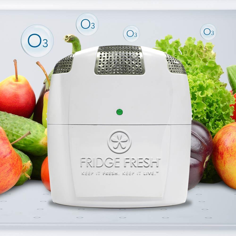 FreshFridge_FreshTechnology.jpg