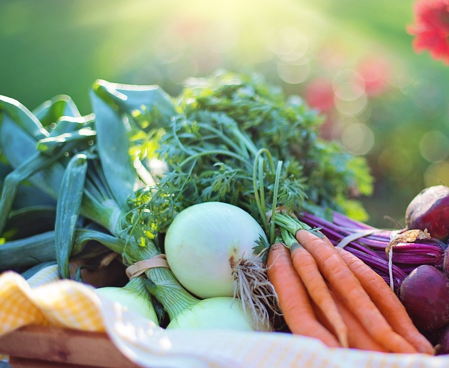 prolong+your+produce.jpg