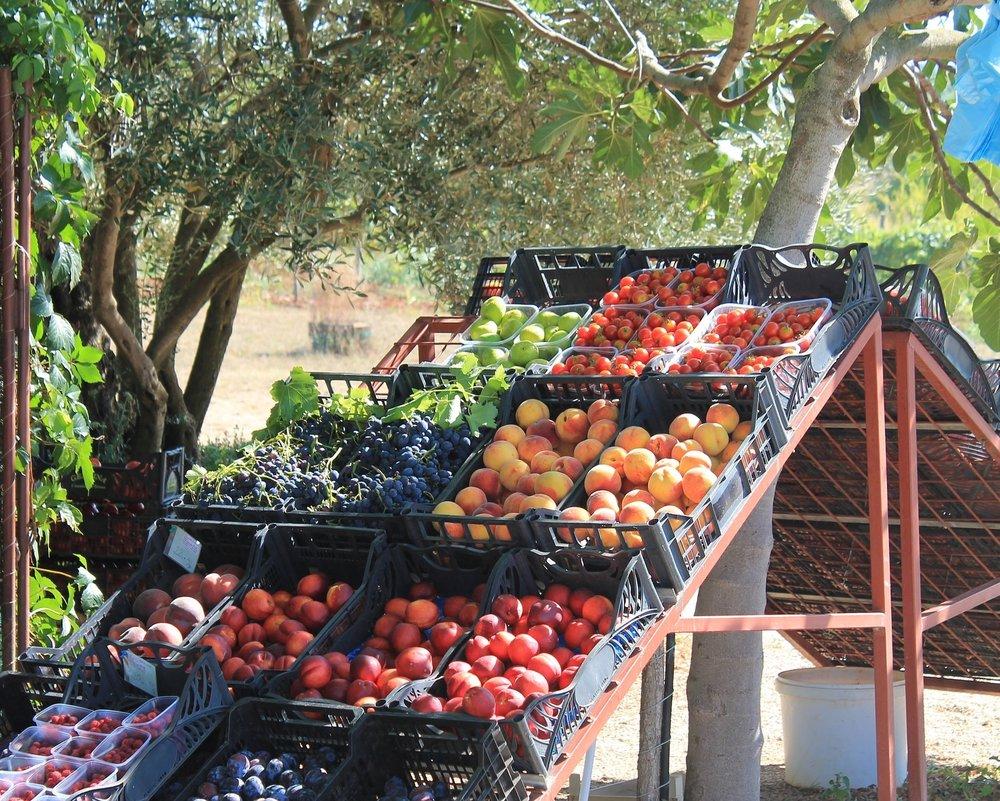 fruit-2419440_1920.jpg