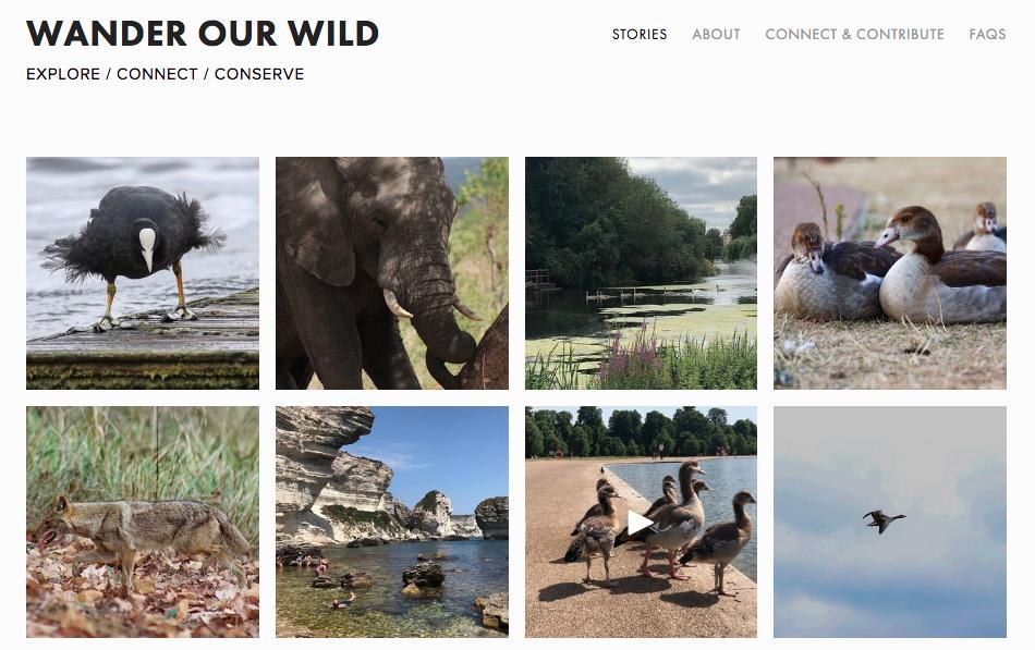 Wander Our Wild (WoW) Website