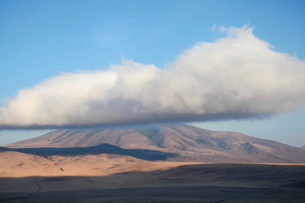 View from the Ngorongoro crater entrance in Tanzania, the largest volcanic caldera in the world.