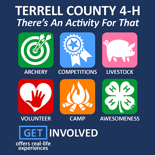 KYC_TERRELL-CO-4H-GET-INVOLVED.jpg