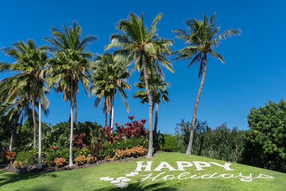 Happy Holidays in Hawaii ©2017 Ranae Keane-Bamsey Photography w