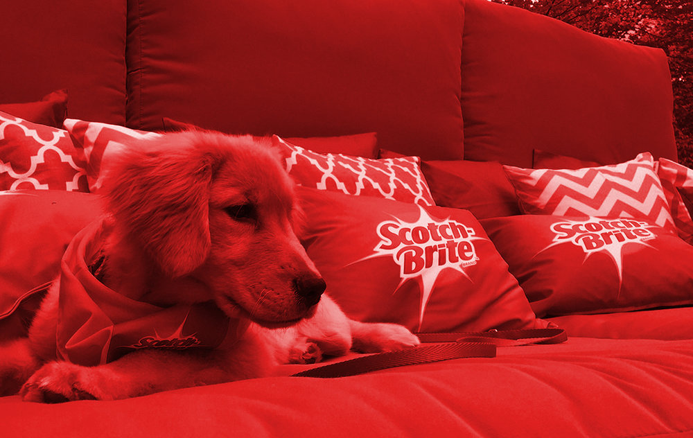 2017 • SCOTCH-BRITE - Client: HUNTER PRFrom couches to beds our furry friends are never really free to roam the entire home. Scotch-Brite broke down those barriers with their powerful lint roller, and invited New York pups to shed and play on a massive cuddle couch in Central Park. Even insta-famous petfluencers joined the fun and helped celebrate National Pet Month. (shoutout to @toastmeetsworld, @goldens_glee, @louboutinanyc and @brussels.sprout)So go ahead lil' pups, shed all you want, the Scotch-Brite lint roller is here to save the day. Our dogs are #worththemess!Silver Anvil Winner - Special Events
