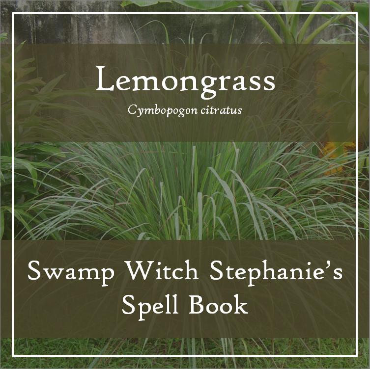 Swamp Witch Stephanie's Spell Book Blog — Swamp Witch Stephanie