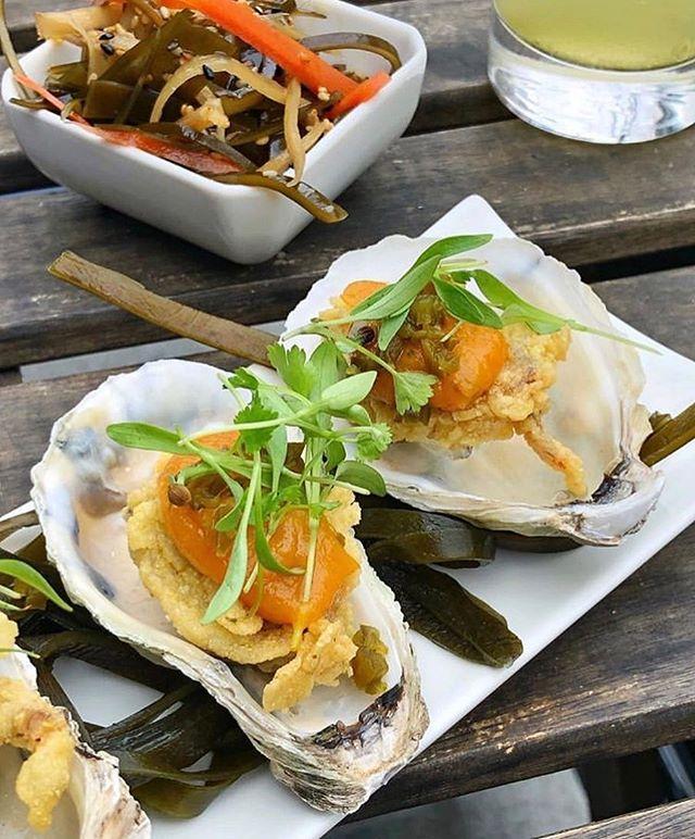 Cornmeal Fried Oysters on the half shell || Happy Hour starts @ 5pm #TeoBrooklyn 📸 :: @rondazed . . . . . #HappyHour #Oysters #Yaki #Ramen #Cocktails #Bushwick #bushwickartcollective #eats #foodporn