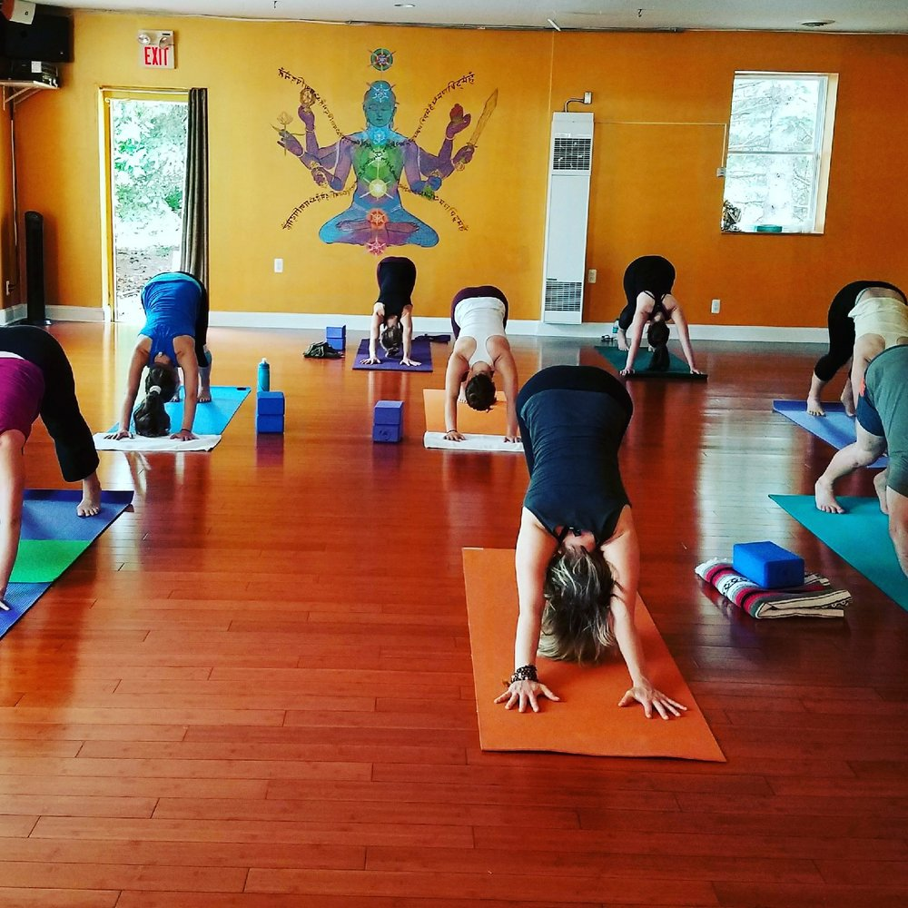 Thank you for helping to create a blissful environment for everyone's enjoyment   ~  A2 Yoga