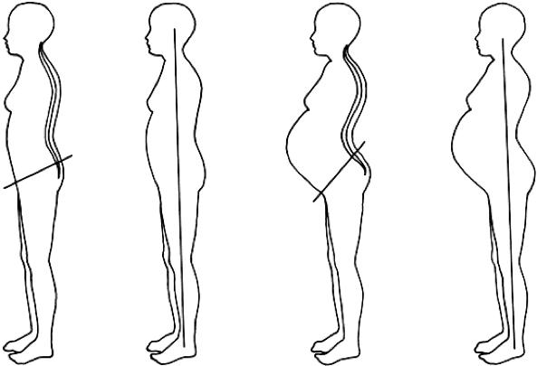 Pregnancy image 3.png