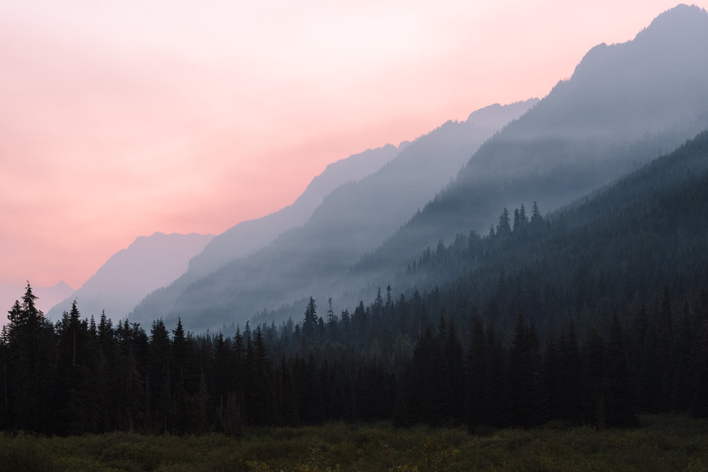 Wildfire Related Smoke Inhalation - Prevention +Herbal Therapeutics