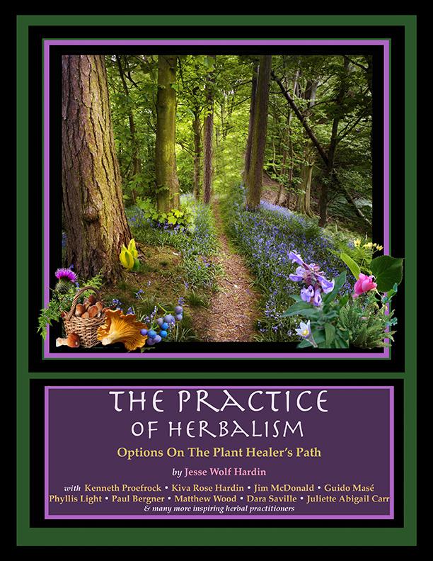 Practice of Herbalism Cover 2sm.jpg