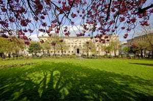 Blythswood Square: A dog friendly hotel in Glasgow