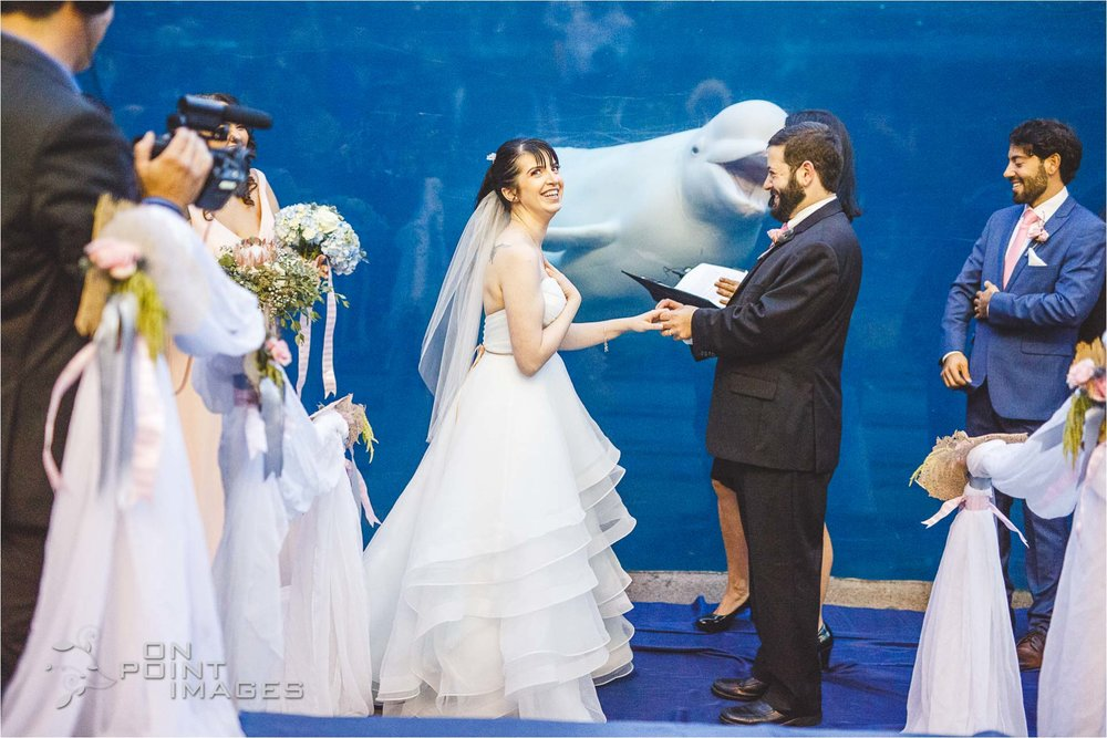 mystic-aquarium-wedding-photographs-26.jpg