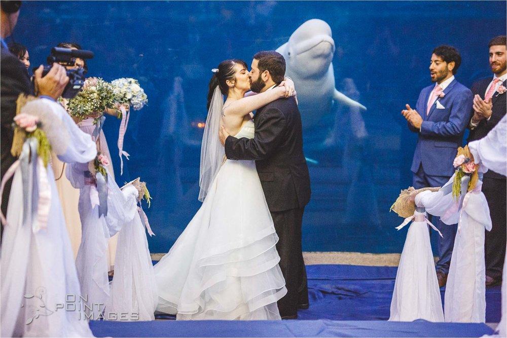 mystic-aquarium-wedding-photographs-27.jpg