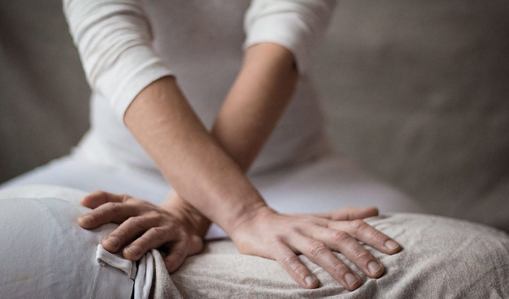 Shitsu massage therapy in Bristol