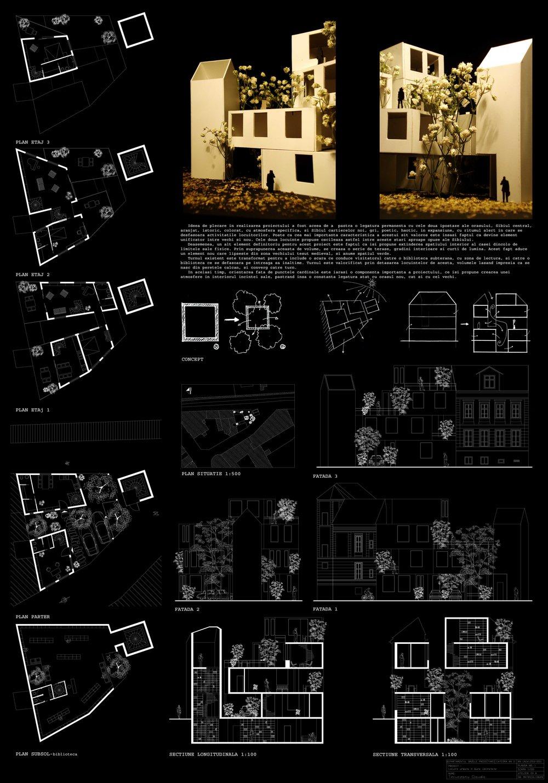 1_1st1_1st_place_Claudia_Tecuceanu_2011