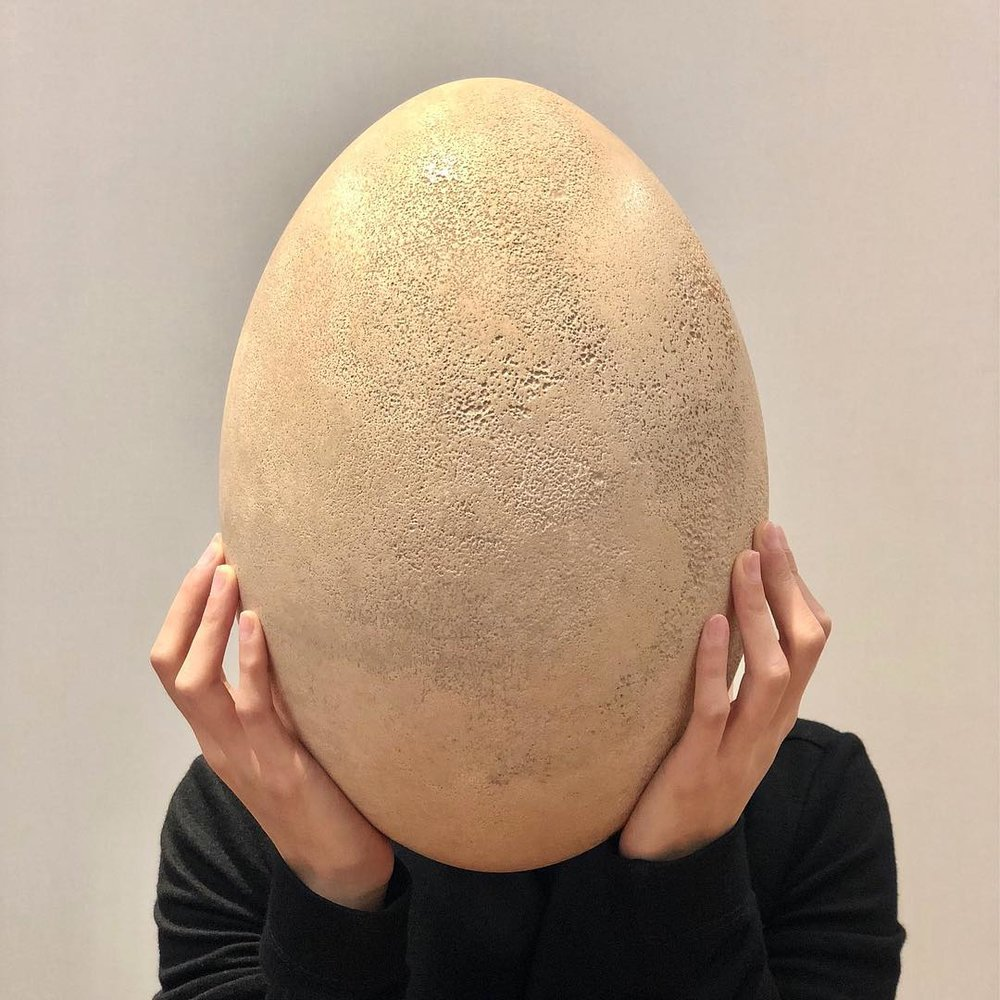 """@Sothebys:  """"This Eggs-traordinary egg belongs to the Elephant bird (Aepyornis maximus), now extinct, and is the largest egg ever known. The bird, reminiscent of a massive ostrich, stood over 10 feet tall and was so enormous that it could carry off an elephant! 🐘Their shells were highly prized by the Madagascans and have been used both practically as containers and treasured as prestige collectables passed down from generations to generations. While most eggs are now housed in public museums, the present egg is one of a few which remain in private hands. (Estimate: HK$350,000-550,000/US$44,800-70500). Pure Egg-cellence🥚"""""""