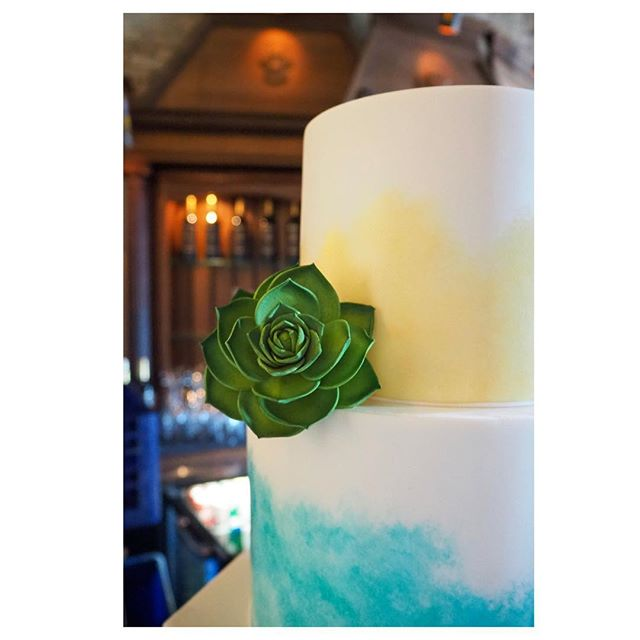 You guys seemed to like this cake from yesterday so I'll share some more photos 😉 Swipe right for details shots and the digital sketch 👉🏼 ⠀⠀⠀⠀⠀⠀⠀⠀⠀ #enticingicingweddings #sugarartist #cakeartist #minneapoliswedding #minnesotawedding #mplsweddingcakes #mplsweddingbakery #mpls #mplsart #mplsartist #edibleart #sugarart #theknotweddings #theknotcakes #mnbride #mnbridecakes #minnesotabride #luxuryweddingcakes #luxurycakes #customcakes #customweddingcakes #fondantcakes #paintedcake #americansouthwest #nativeamericanprint #watercolorcake #cakesketch #sugarflowers