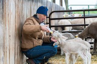 2017 May Conservancy Farm Tour BCS Livestock-0964.jpg