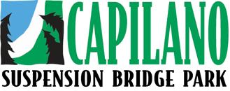 logo-capbridgemain.png
