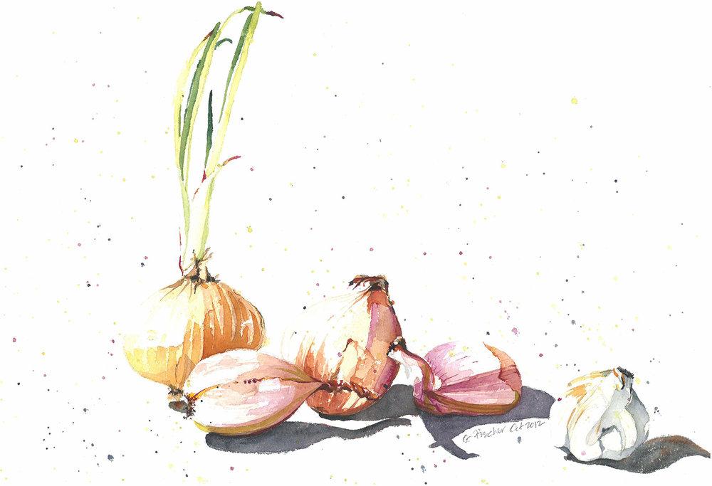 Onions, Shallots, & Garlic