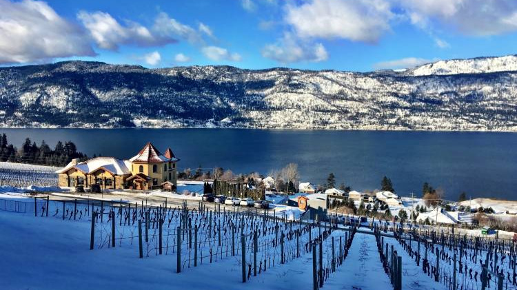 7. Dinner Gray Monk - Go early for a wine tasting + have dinner over an amazing lake view. More info