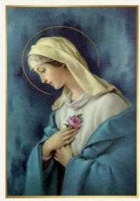 OUR LADY OF THE ROSE