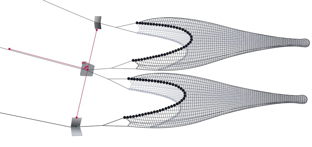 Pictured: Twin Trawls + Middle Wire Adjustment
