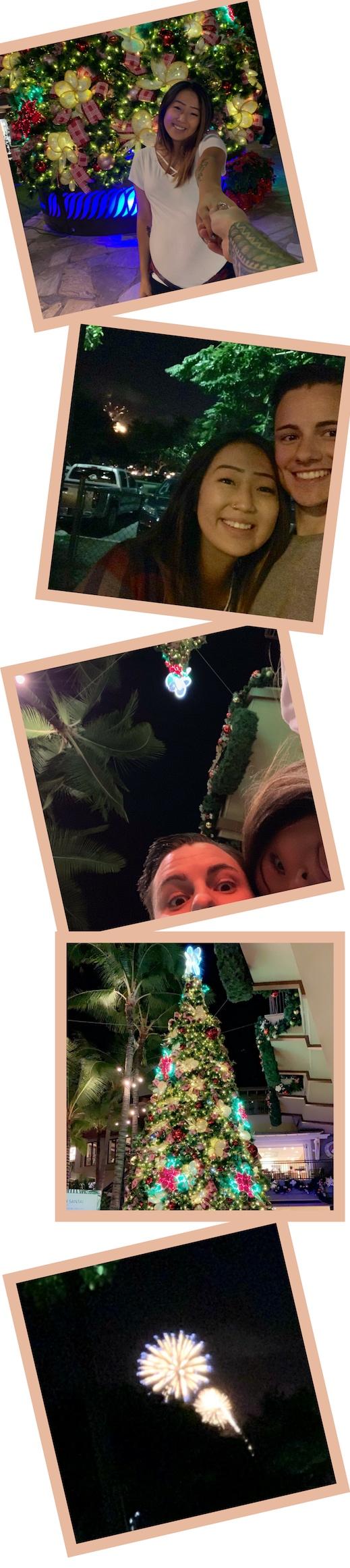 Holidays+in+Hawaii+Banner.jpg