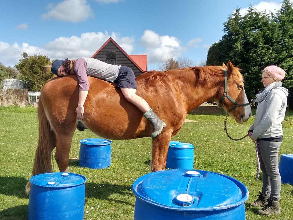 """""""So yeah, to an observer I was lying backwards on the back of this horse, and yet what was actually occurring, as subtle as it may seem, became mindful and limitless.""""    Social Anthropologist , Aotearoa"""