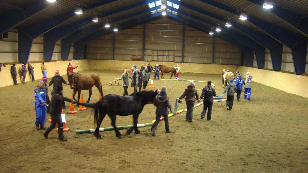 2015 - 3-day training workshopat Lofoten Hest og helsesenterLofoten, Norway