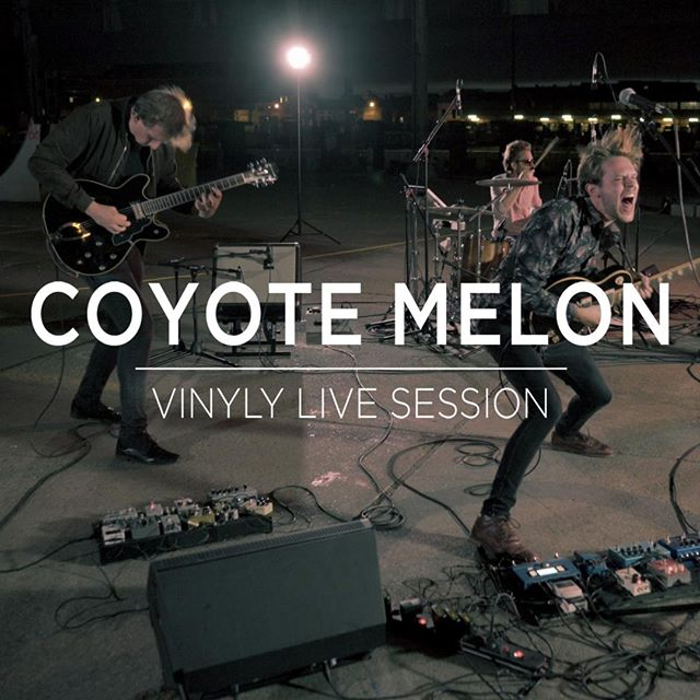 Melodic rock with a touch of crazy weirdness. Todays featured staff pick comes from @coyote_melon. Link in bio or on www.vinylymusic.com⠀⠀⠀⠀⠀⠀⠀⠀⠀ ⠀⠀⠀⠀⠀⠀⠀⠀⠀ .. #ghentmusicscene⠀⠀⠀⠀⠀⠀⠀⠀⠀ #vinylymusic #livesession⠀⠀⠀⠀⠀⠀⠀⠀⠀ #Garagerock #garagerock #indiemusic #alternativerock #alternative #indiepop #newmusic #guitar #rockmusic #grunge #indieband #alternativemusic #indieartist #rockband #rockandroll #newartist #nowplaying #guitarmusic #psychpop #psychrock #psychedelic #fuzz #fuzzpedal #beatles #hendrix #mischiefnight #venray