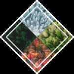 TheFourReasons_Logo-3-3.png
