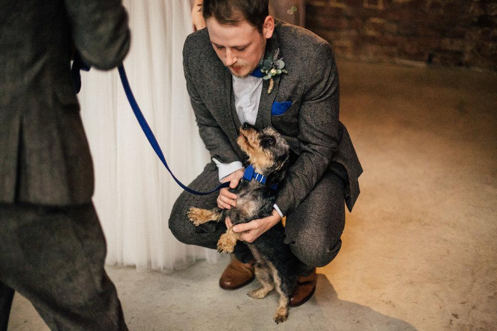 Sheffield Wedding Photographer Dogs at Weddings 99 Mary Street
