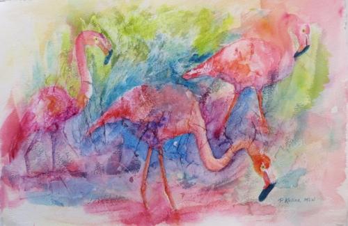 Pinks-Paula Kalina.JPG