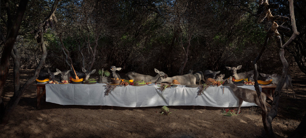 "The Deer Feast  Peru, 2014  10""x22"" 