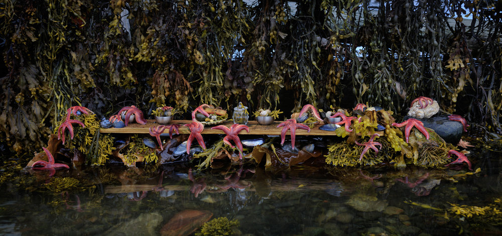 "The Starfish Feast  Norway, 2014  10""x21"" 