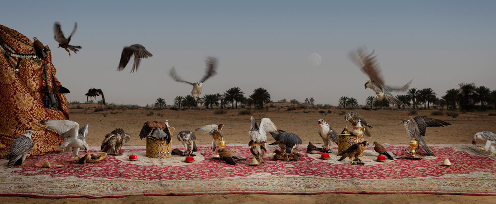 "The Falcon Feast  United Arab Emirates, 2016  10""x24"" 