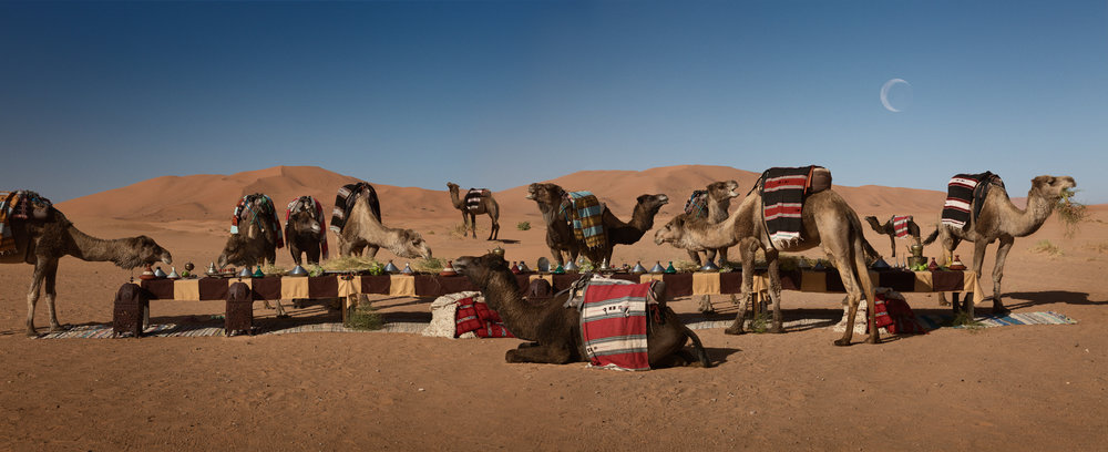 "The Dromedary Feast  Morocco, 2016  10""x24.5"" 