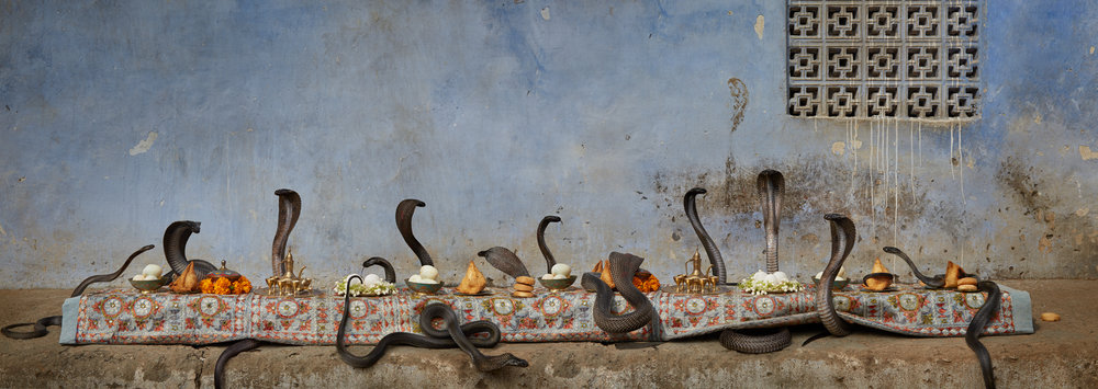 "The Cobra Feast  India, 2016  10""x28"" 