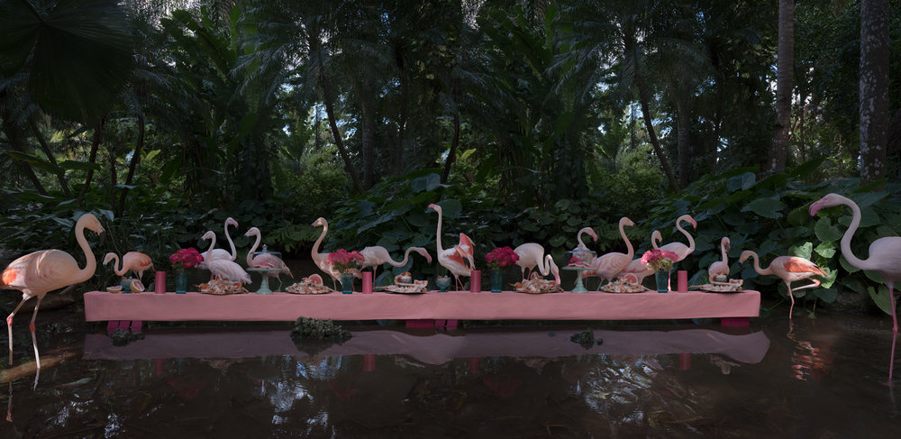"The Flamingo Feast  United States, 2017  10""x20.5"" 