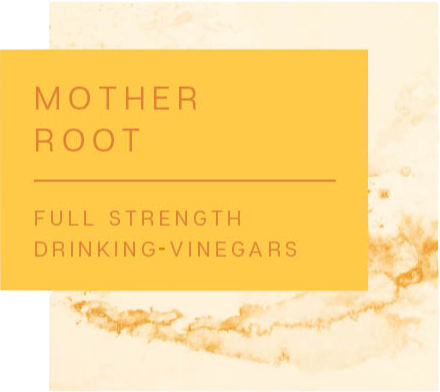 MOTHER ROOT