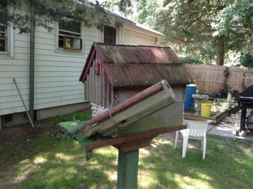 oldbirdhouse4.jpg