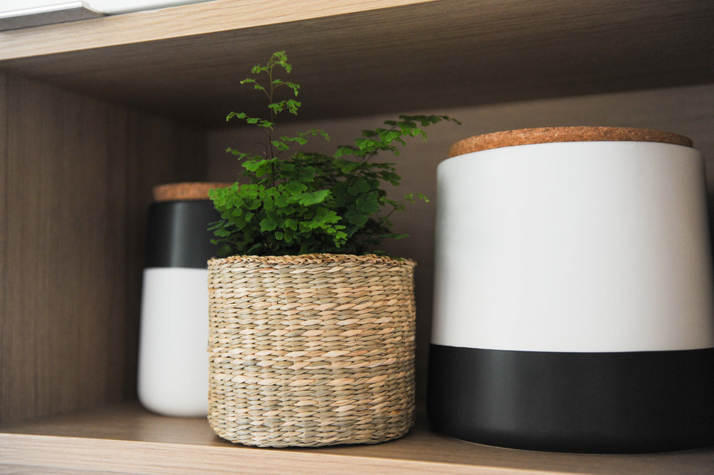 Two black and white ceramic jars with cork lids and a fern plant in a wicker planter sits in a wooden shelf.