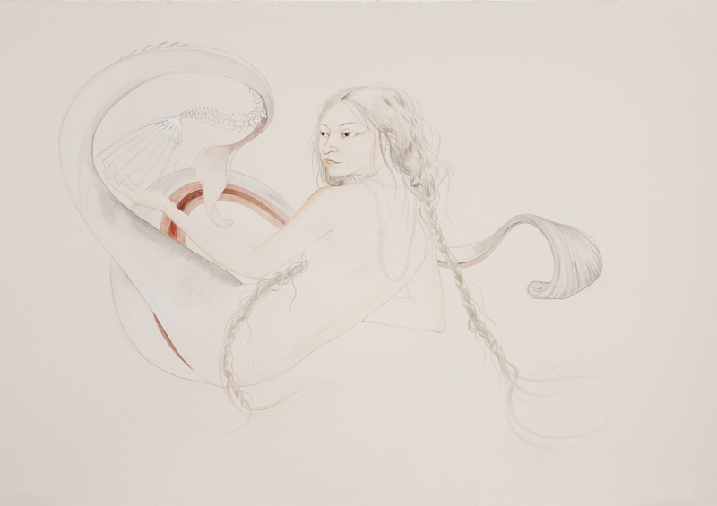 Slit , 2010 Graphite, watercolor on ivory paper 27.5 x 39 inches