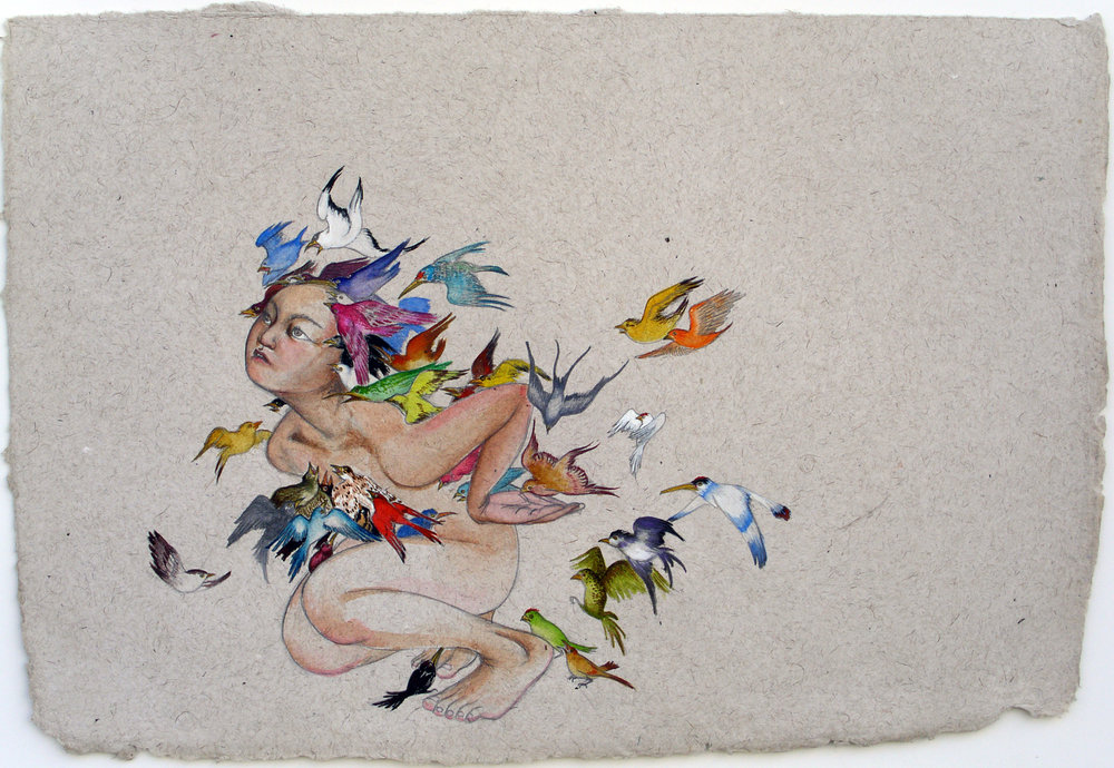 Bird Like , 2007 Graphite, ink and watercolor on handmade Indian paper 22 x 30 inches Private collection